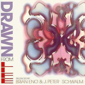 Drawn Fron Life