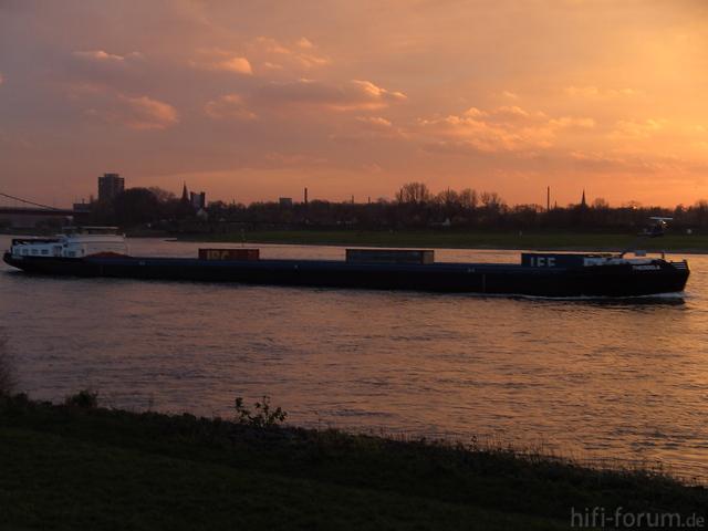 Am Rhein (14)