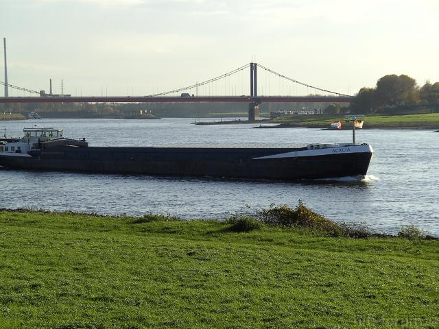 Am Rhein (20)