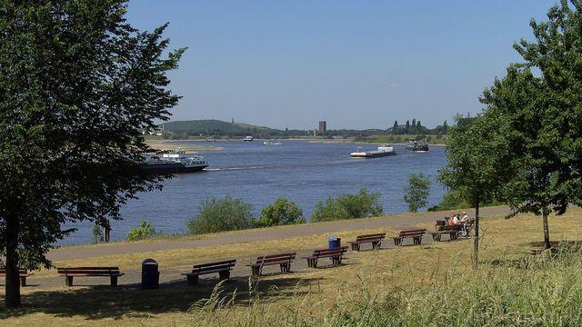 Rhein10