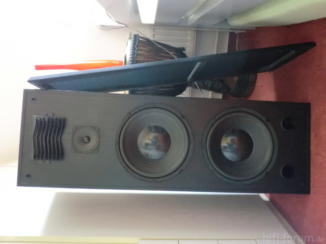 CAT-Lautsprecher