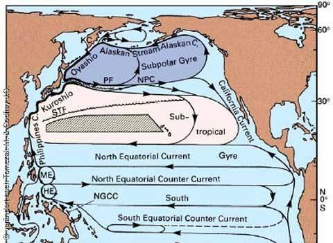 Strömungen Im Nordpazifik
