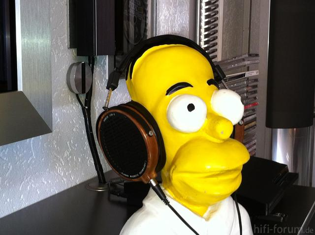 Homer Mit Meinem LCD2
