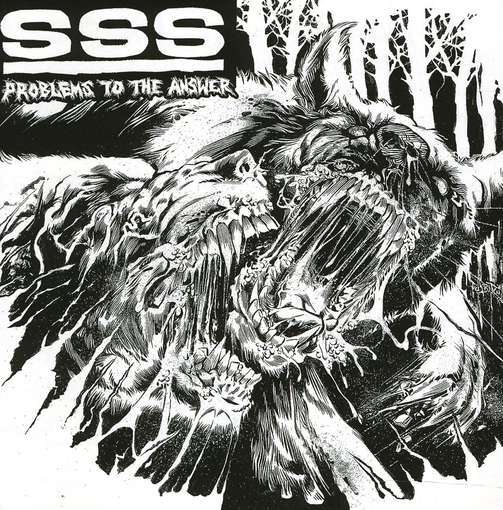 SSS – Problems To The Answer