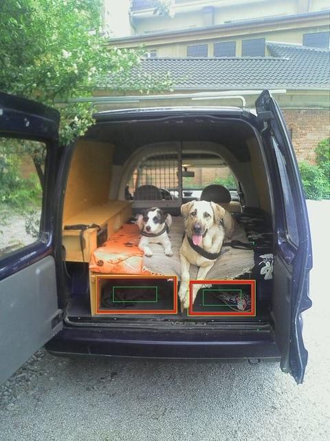 Caddyvonhintenbewachtvonhundies