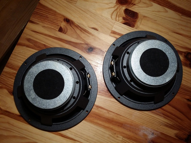 Andrian Audio A165G
