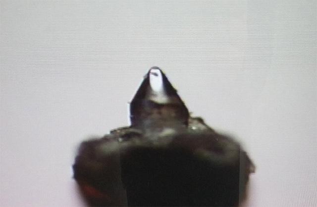 Nadel-1