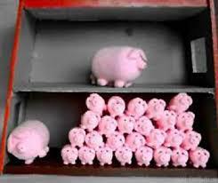 Schweine 750405