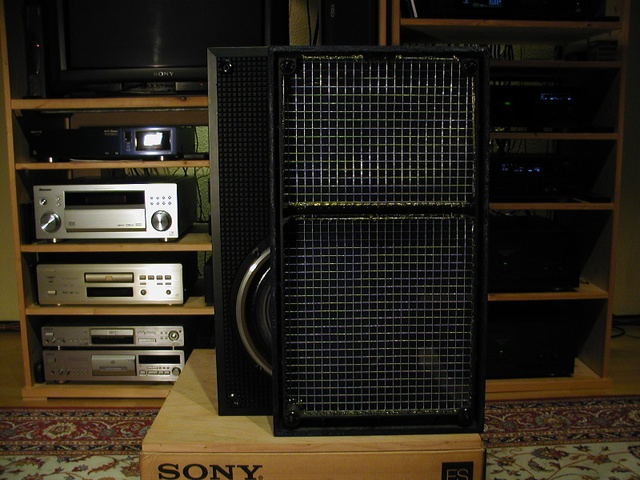 Sony SS-G 3 Bespannung