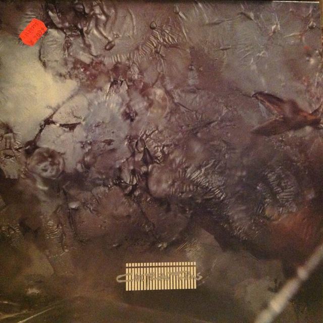 Der Rotierende Vinyl Thread Was Dreht Bei Euch Auf