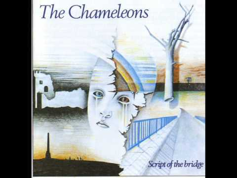 THE CHAMELEONS-Script of the bridge