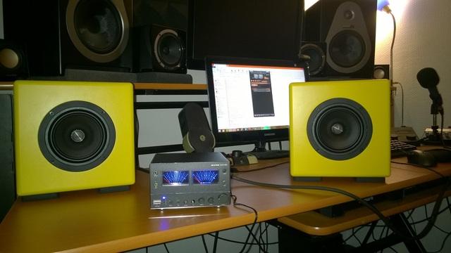 DIY-Breitbandlautsprecher (Auratone 2.0), Lautsprecher ...