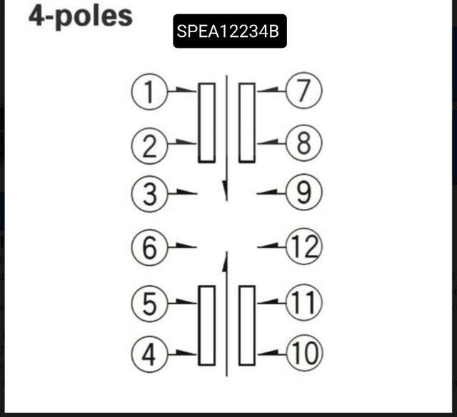 SPEA12234b