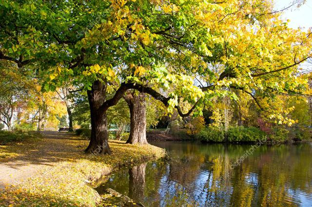 Depositphotos 34725801 Stock Photo Autumn Park In The City
