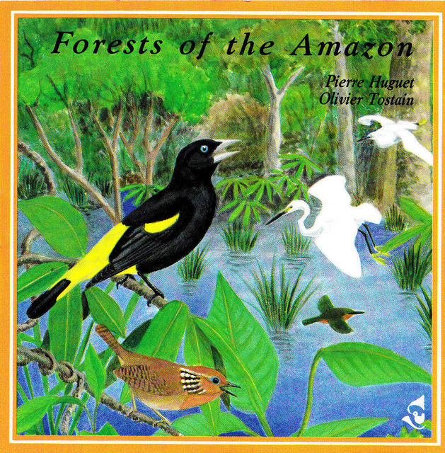 Forests Of The Amazon