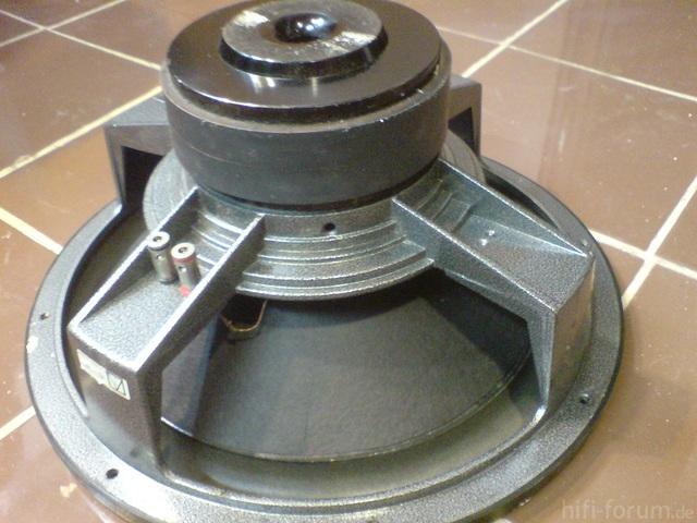 DSC03554