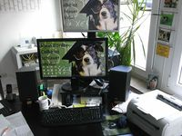 reeller Desktop