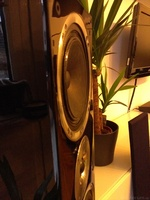 defekter Lautsprecher?