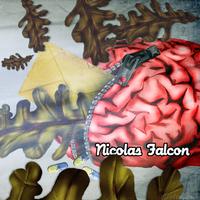 nicolas_falcon_web