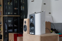 Twiggy vs Sonus Faber Vernere 1.5 Close-up