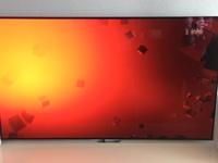 OLED Pixelfehler LG 65c7v