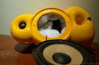Sie best-performenden Scandyna Minipod der Welt