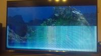 Bildfehler Samsung UE43J5670 Fernseher Projektoren