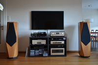 Accuphase p800